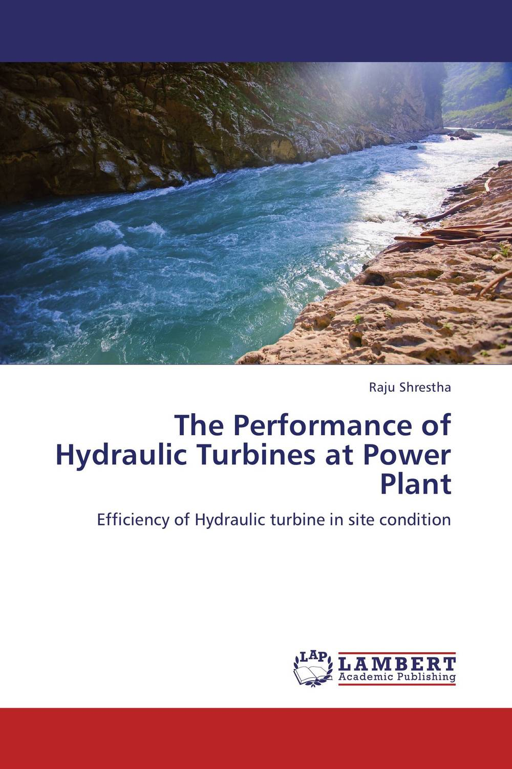 The Performance of Hydraulic Turbines at Power Plant