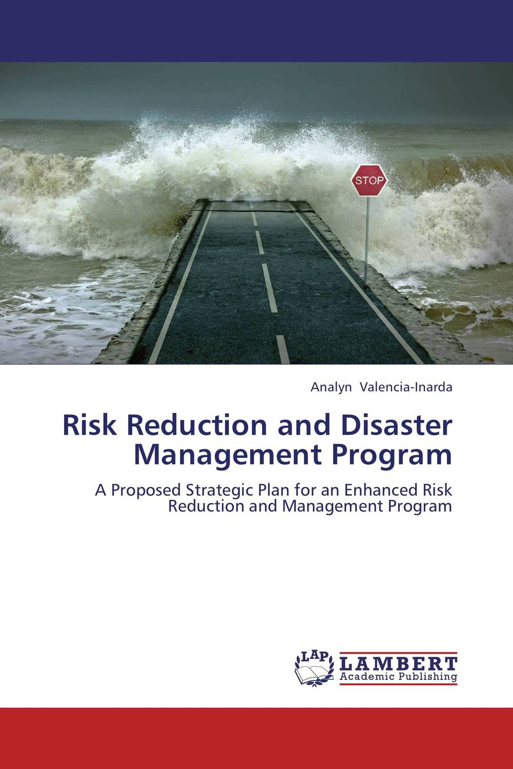 где купить  Risk Reduction and Disaster Management Program  по лучшей цене