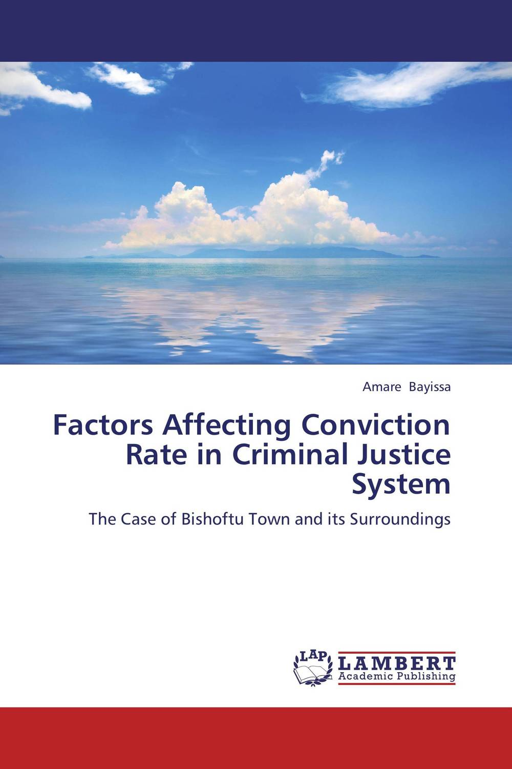 Factors Affecting Conviction Rate in Criminal Justice System the criminal law system of medieval and renaissanc e florence