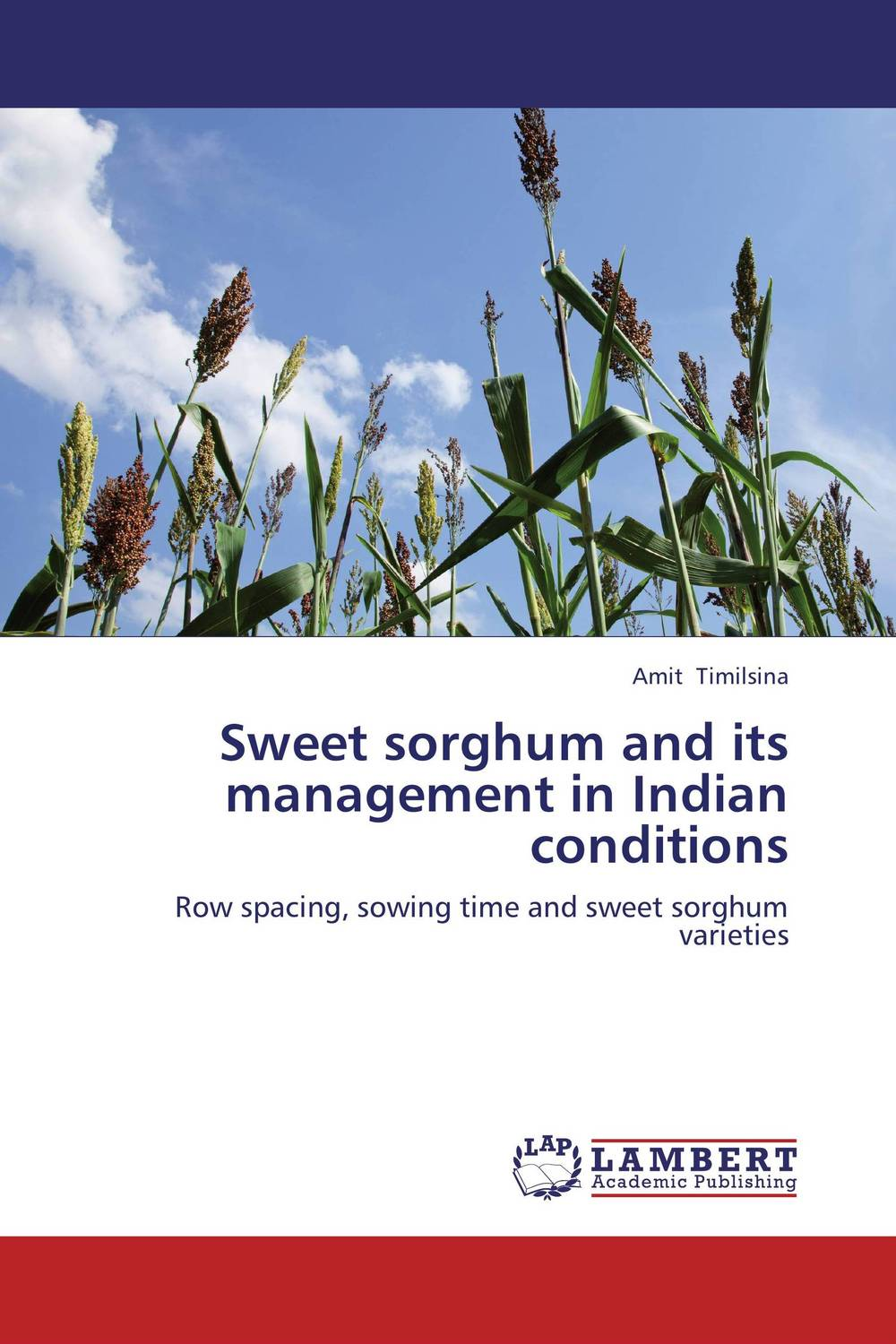 Sweet sorghum and its management in Indian conditions sadat khattab usama abdul raouf and tsutomu kodaki bio ethanol for future from woody biomass