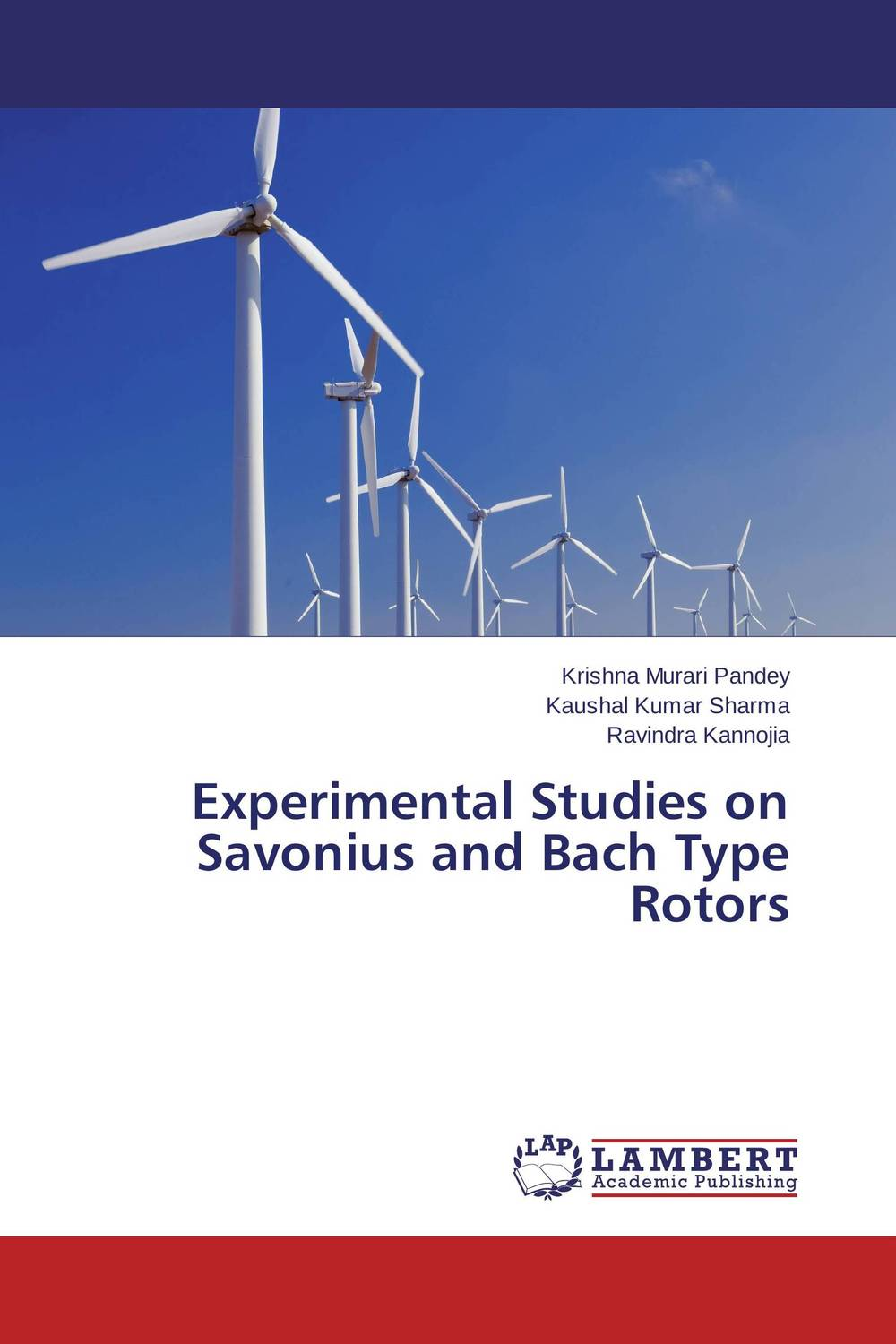 Experimental Studies on Savonius and Bach Type Rotors emphasis has been placed on the appeal of shoes pu sandals 15 cm super stilettos model stage photos of shoes
