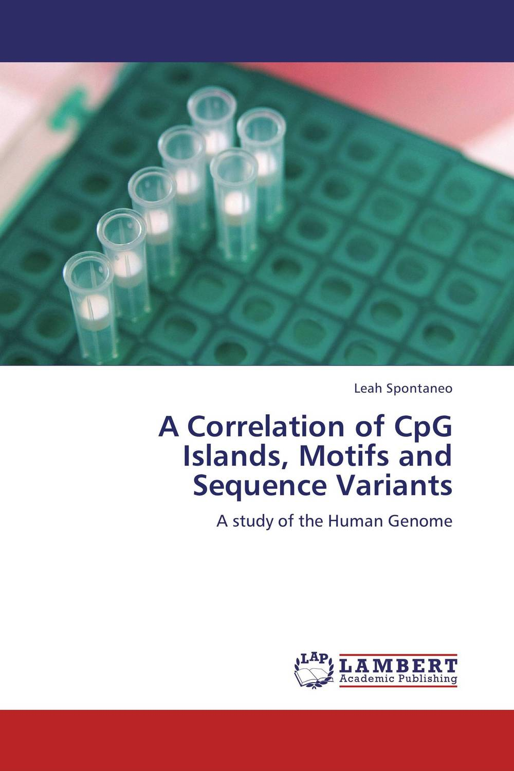 A Correlation of CpG Islands, Motifs and Sequence Variants islands in the stream