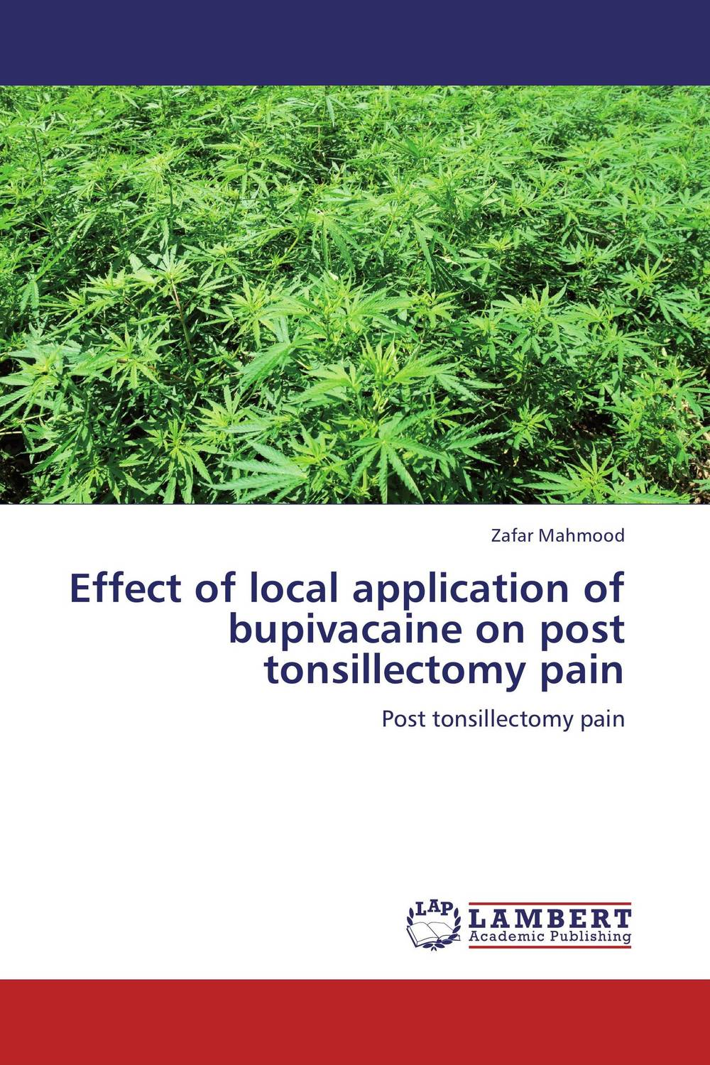 Effect of local application of bupivacaine on post tonsillectomy pain the application of global ethics to solve local improprieties