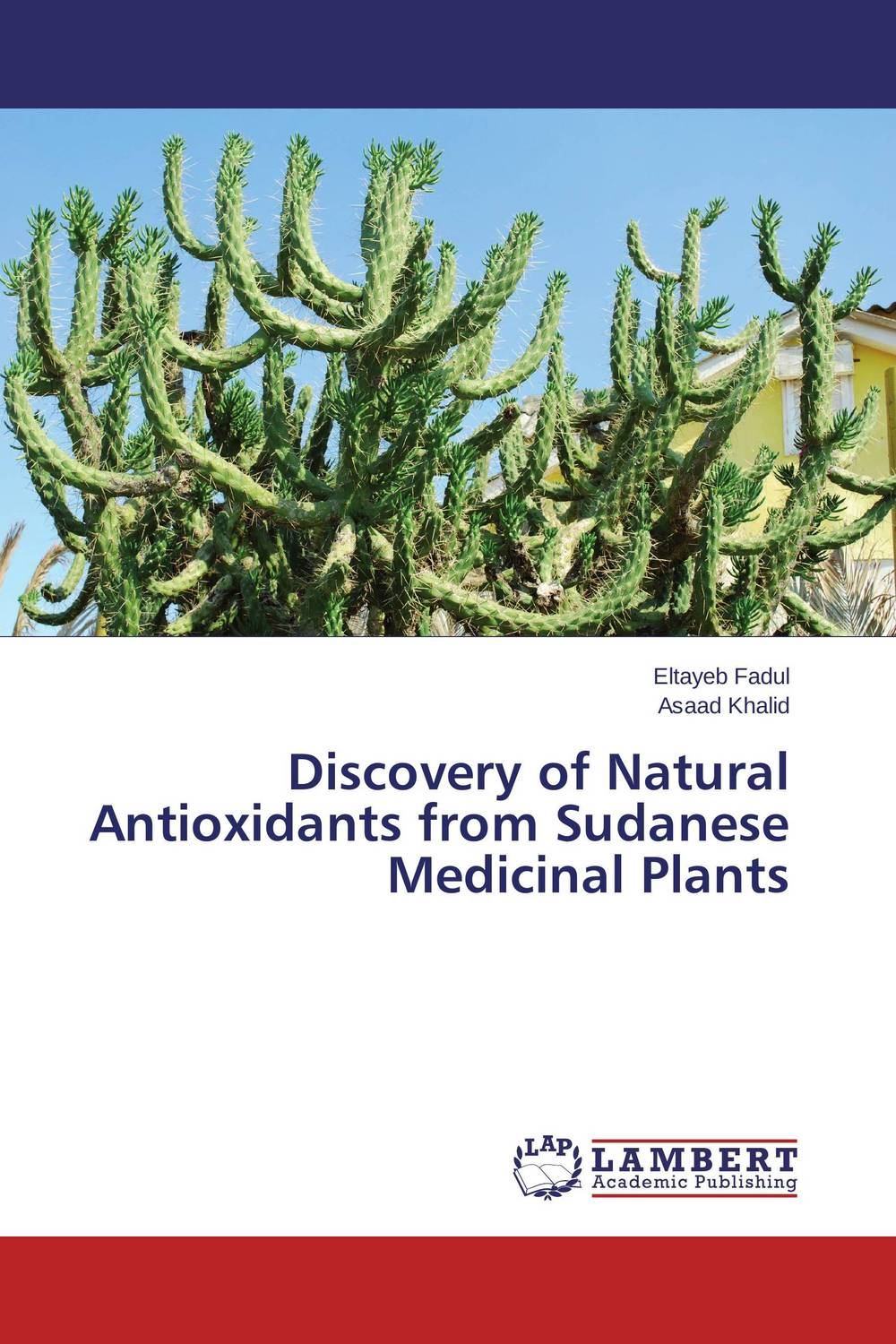 Discovery of Natural Antioxidants from Sudanese Medicinal Plants