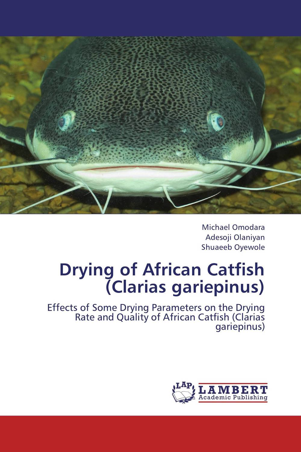 Drying of African Catfish (Clarias gariepinus) presidential nominee will address a gathering
