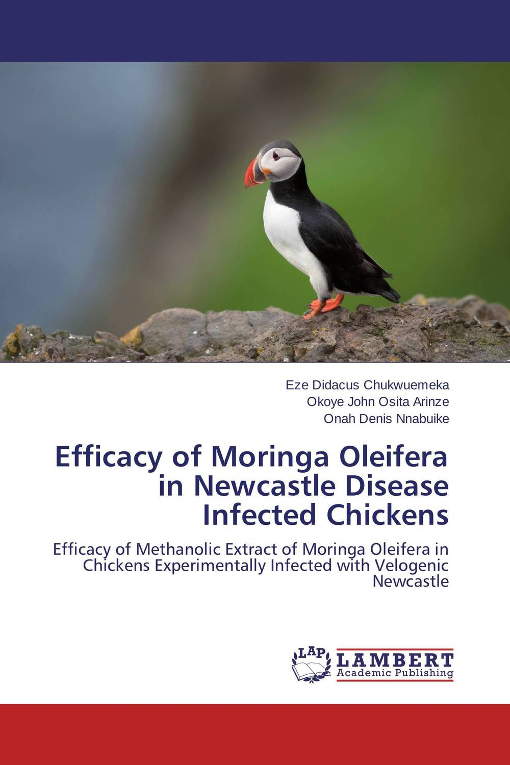 Efficacy of Moringa Oleifera in Newcastle Disease Infected Chickens herbal extract powder moringa oleifera leaf powder capsule 500mg 800pcs
