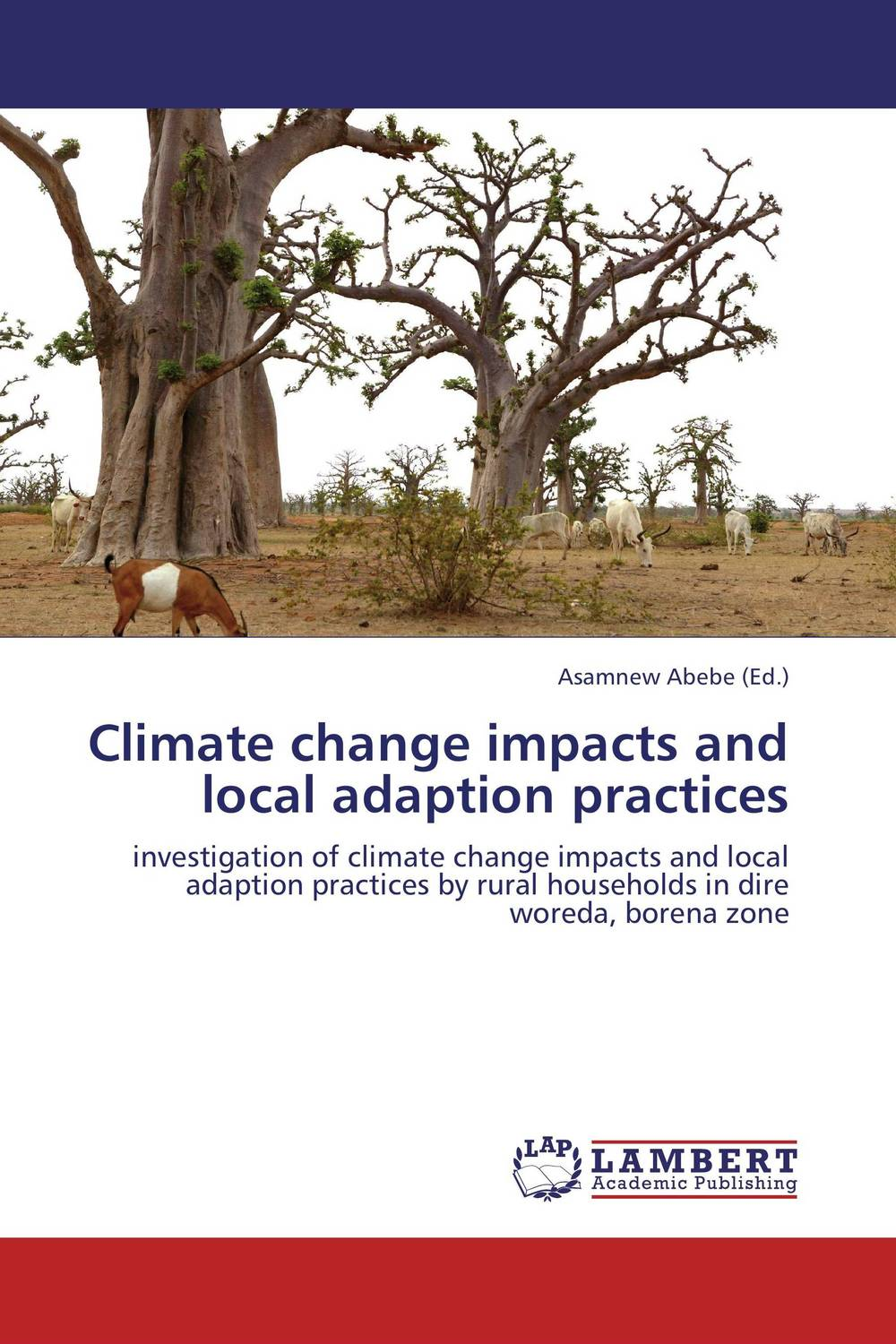 Climate change impacts and local adaption practices local practices in coping with floods and droughts at basin scale