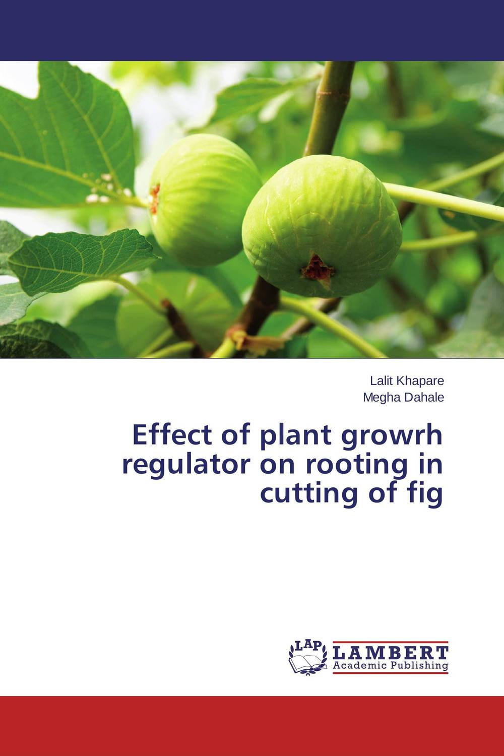 Effect of plant growrh regulator on rooting in cutting of fig biochemical composition of plant roots