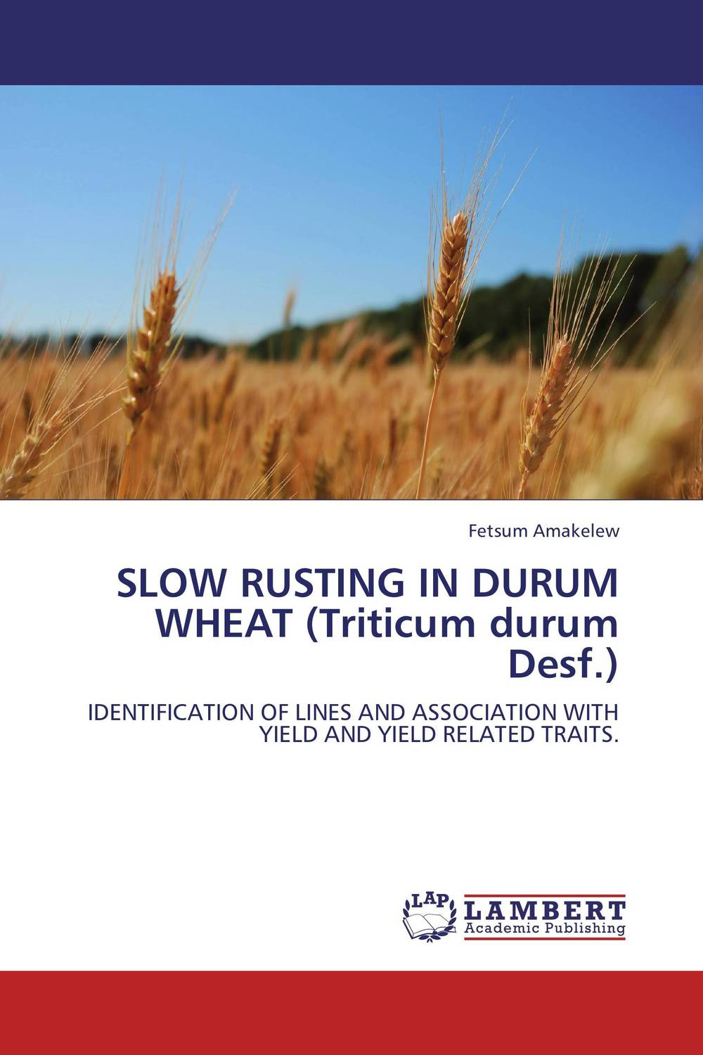 SLOW RUSTING IN DURUM WHEAT (Triticum durum Desf.) genetic variation for stem rust resistance in spring wheat