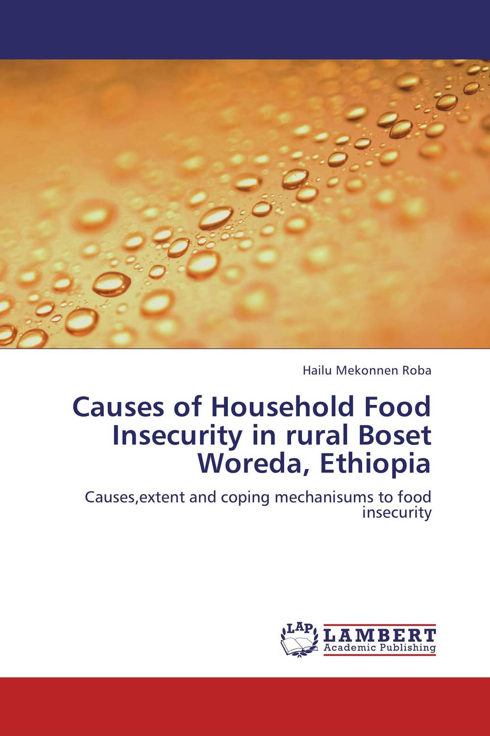 Causes of Household Food Insecurity in rural Boset Woreda, Ethiopia agatha daniel and charles olungah women s indigenous knowledge in household food security