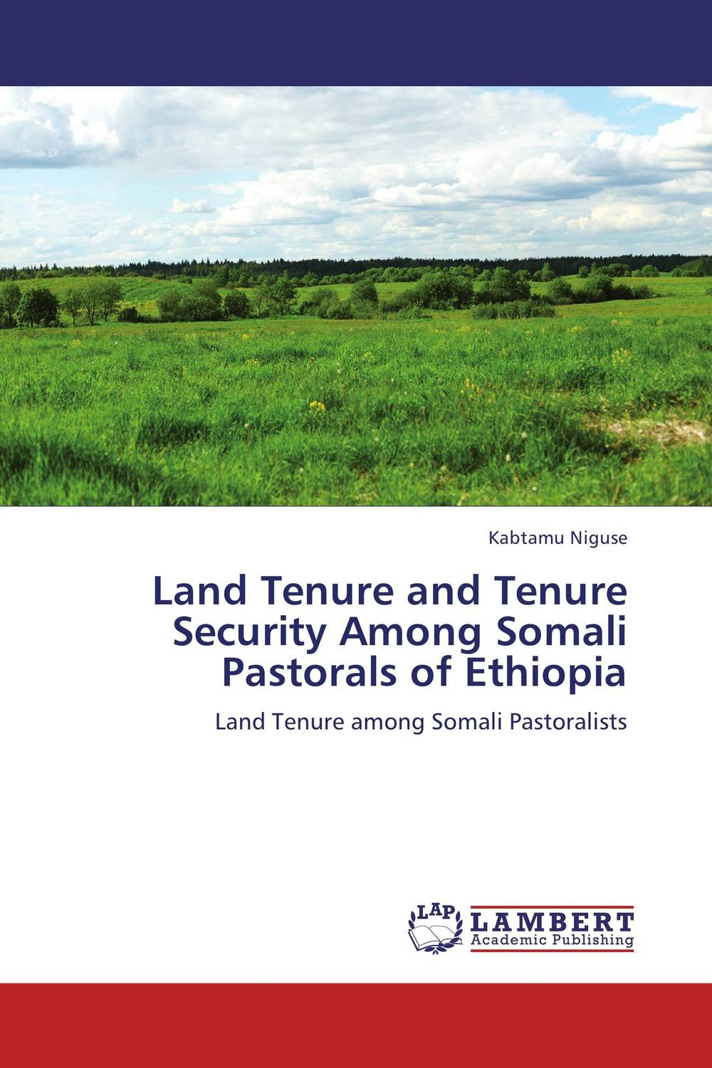 Land Tenure and Tenure Security Among Somali Pastorals of Ethiopia land tenure housing and low income earners