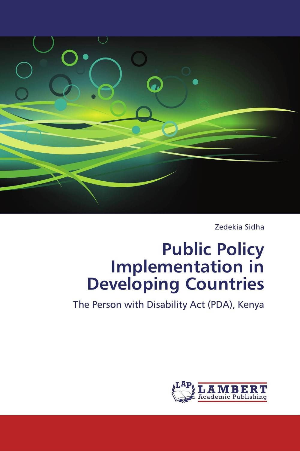 Public Policy Implementation in Developing Countries human rights and people with disability