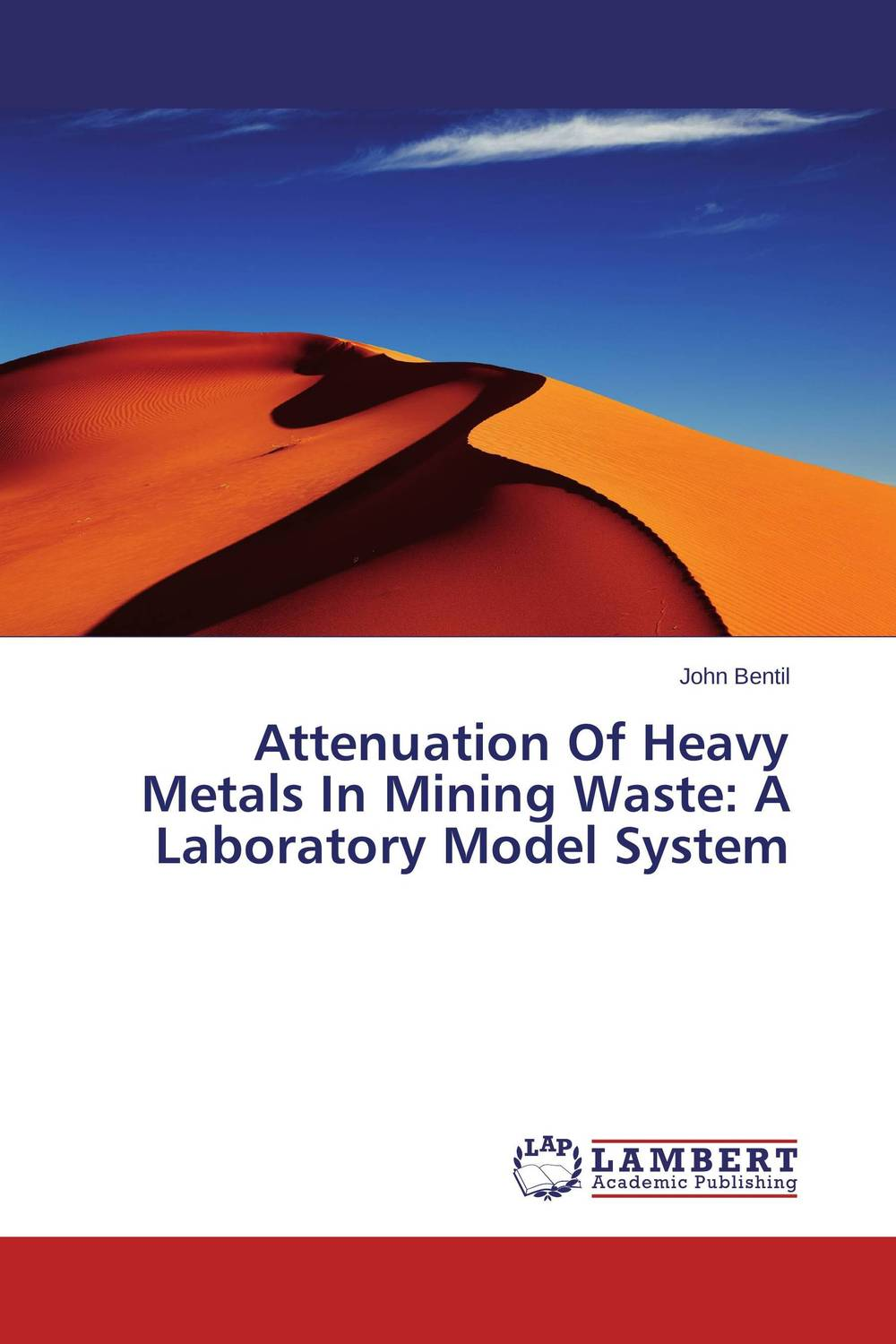Attenuation Of Heavy Metals In Mining Waste: A Laboratory Model System anatomy of a disappearance
