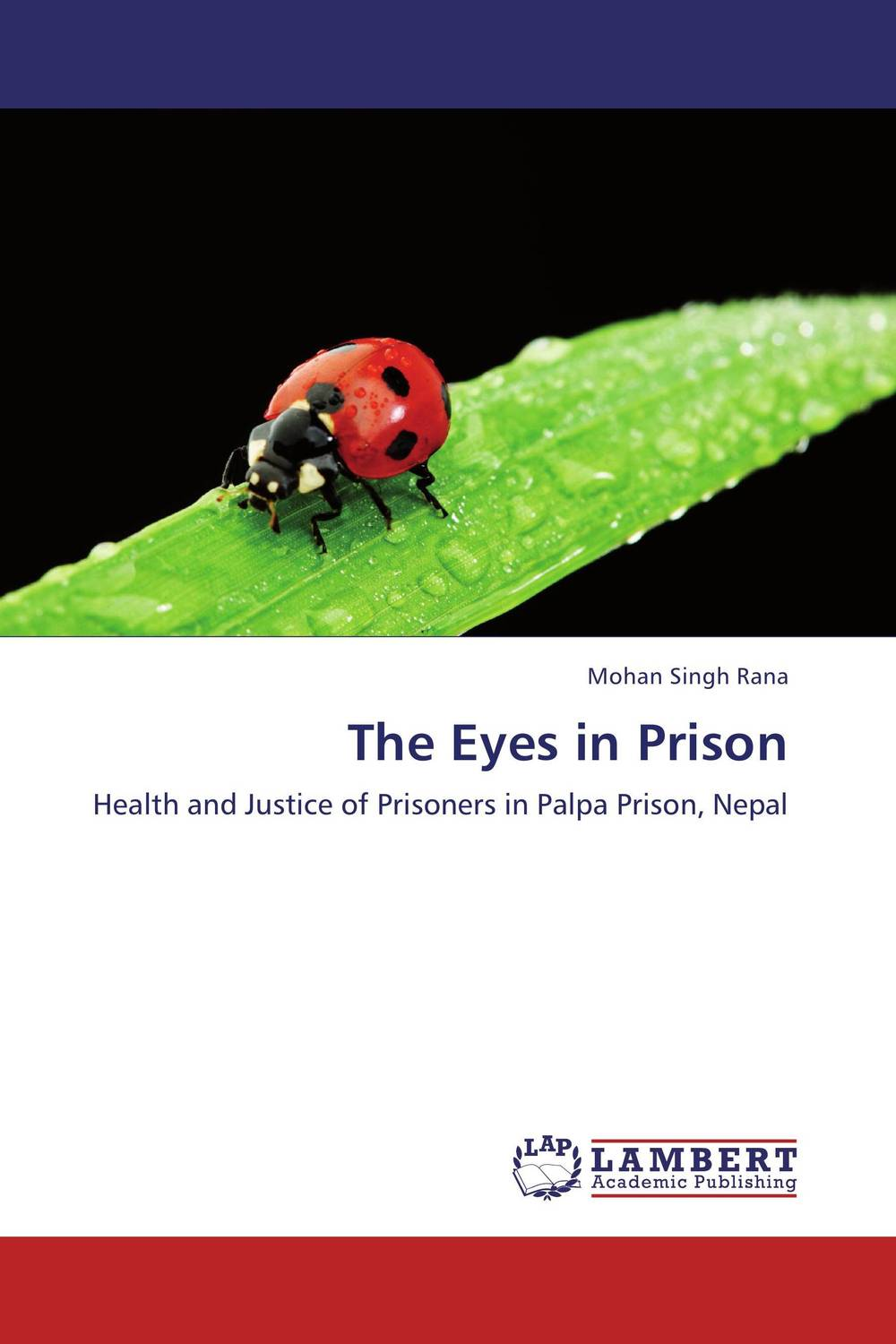 The Eyes in Prison linguistic diversity and social justice