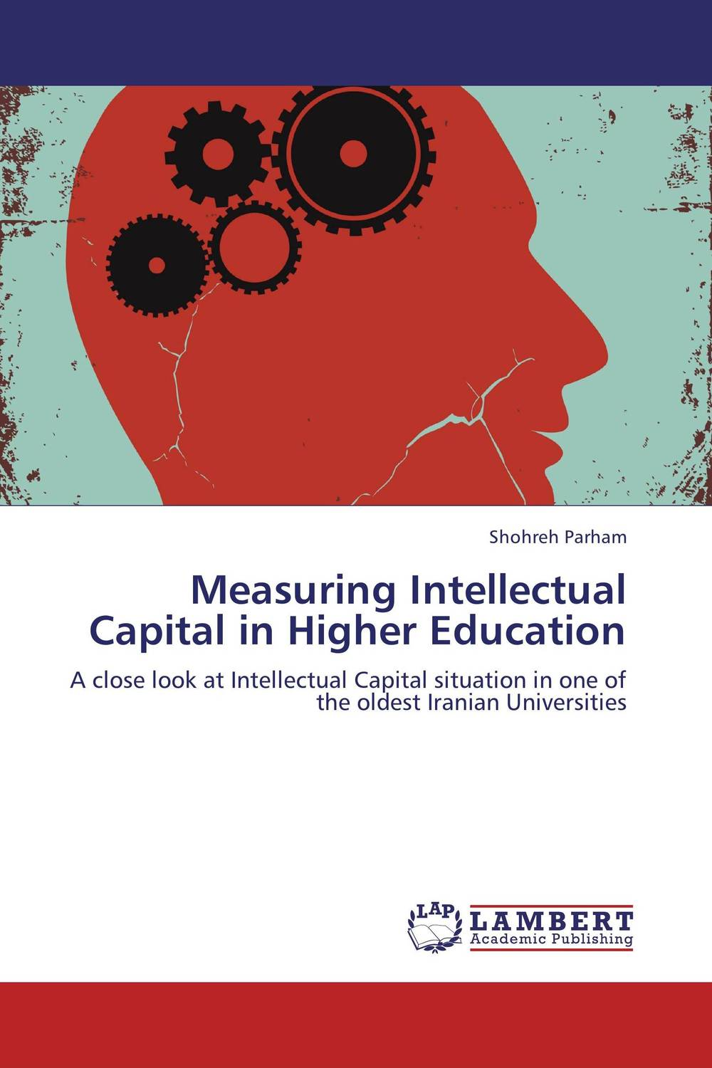 Measuring Intellectual Capital in Higher Education perspectives on intellectual capital multidisciplinary insights into management measurement and reporting