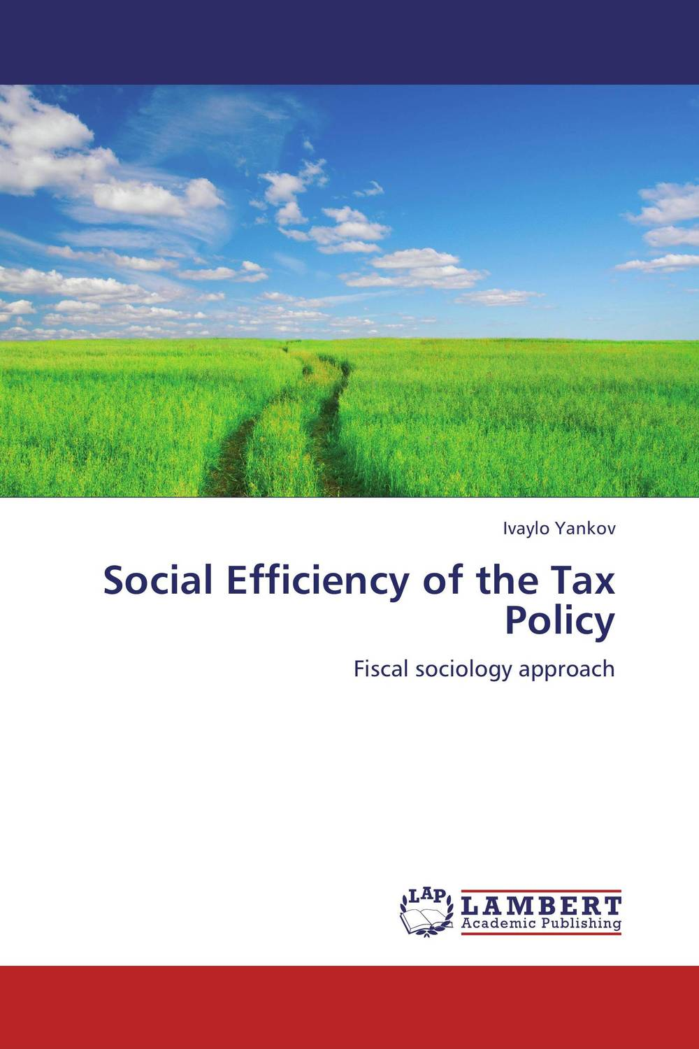 Social Efficiency of the Tax Policy the viabilities of musyarakah as social protection mechanism