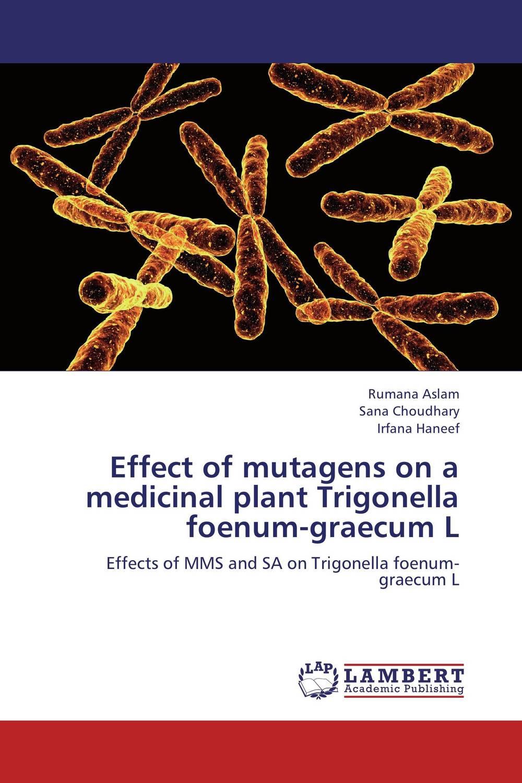Effect of mutagens on a medicinal plant Trigonella foenum-graecum L plant genetic resources
