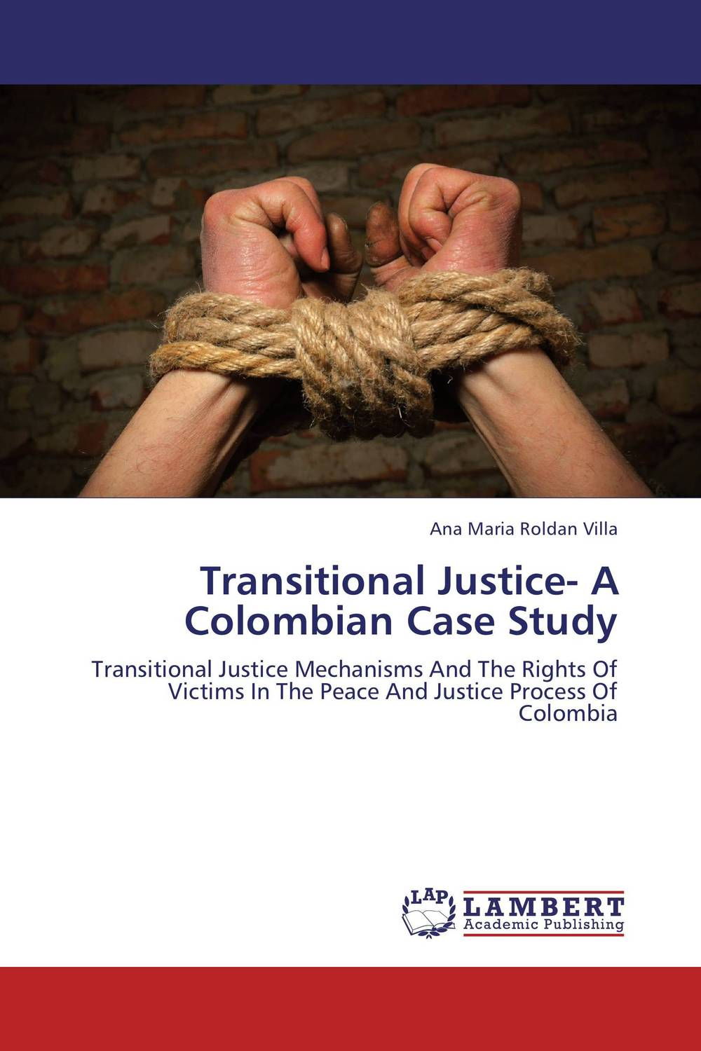 Transitional Justice- A Colombian Case Study tort liability for human rights abuses