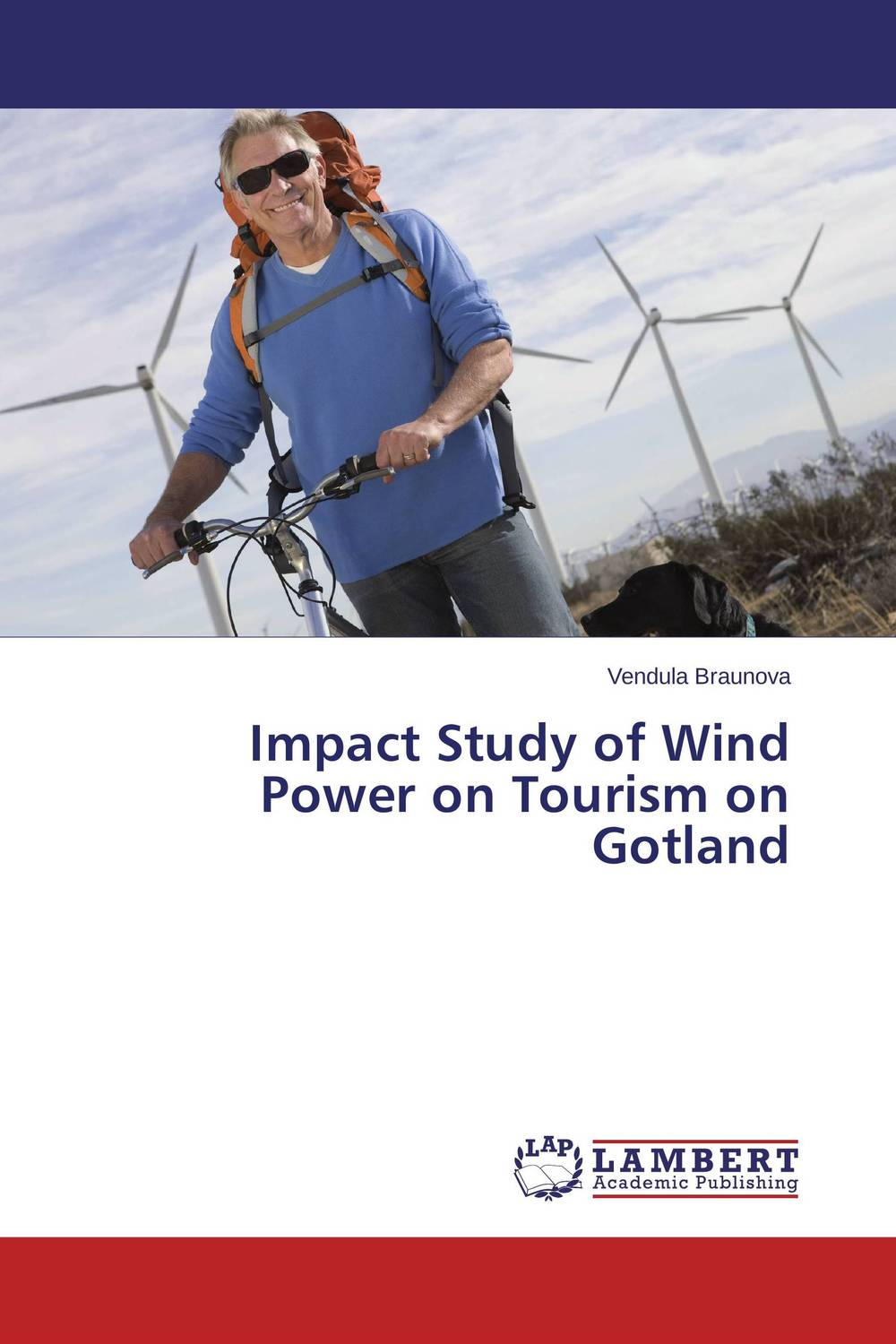 Фото Impact Study of Wind Power on Tourism on Gotland