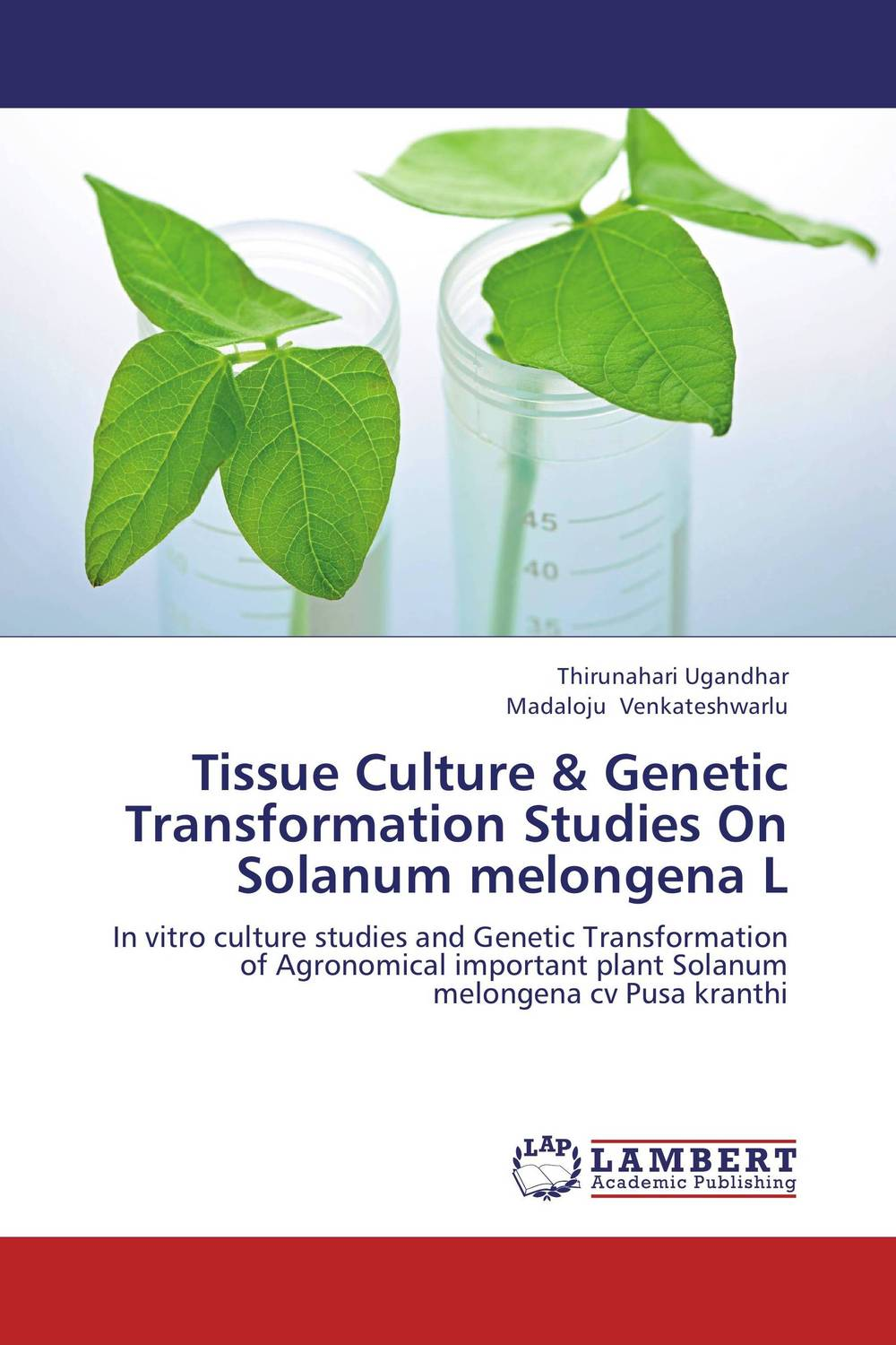 Tissue Culture & Genetic Transformation Studies On Solanum melongena L effect of medicinal plant extracts on the viability of protoscoleces