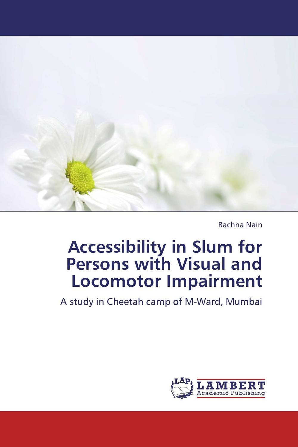 Accessibility in Slum for Persons with Visual and Locomotor Impairment slum upgrading and its contribution to environment sustainability