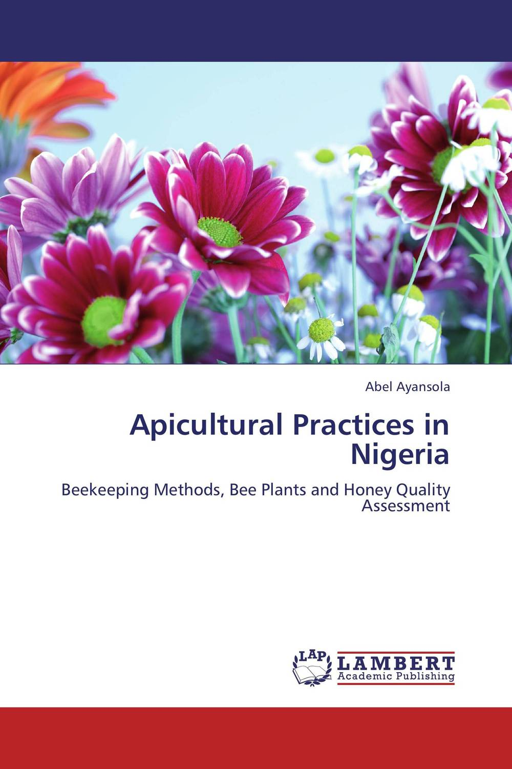 Apicultural Practices in Nigeria assessment of on street parking in lokoja nigeria