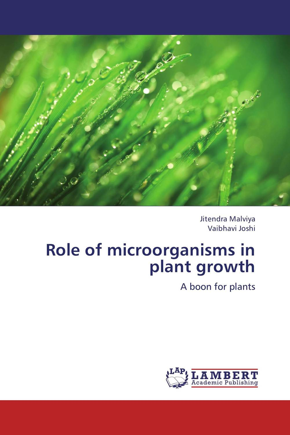 Role of microorganisms in plant growth ornamental plant production in recycled water