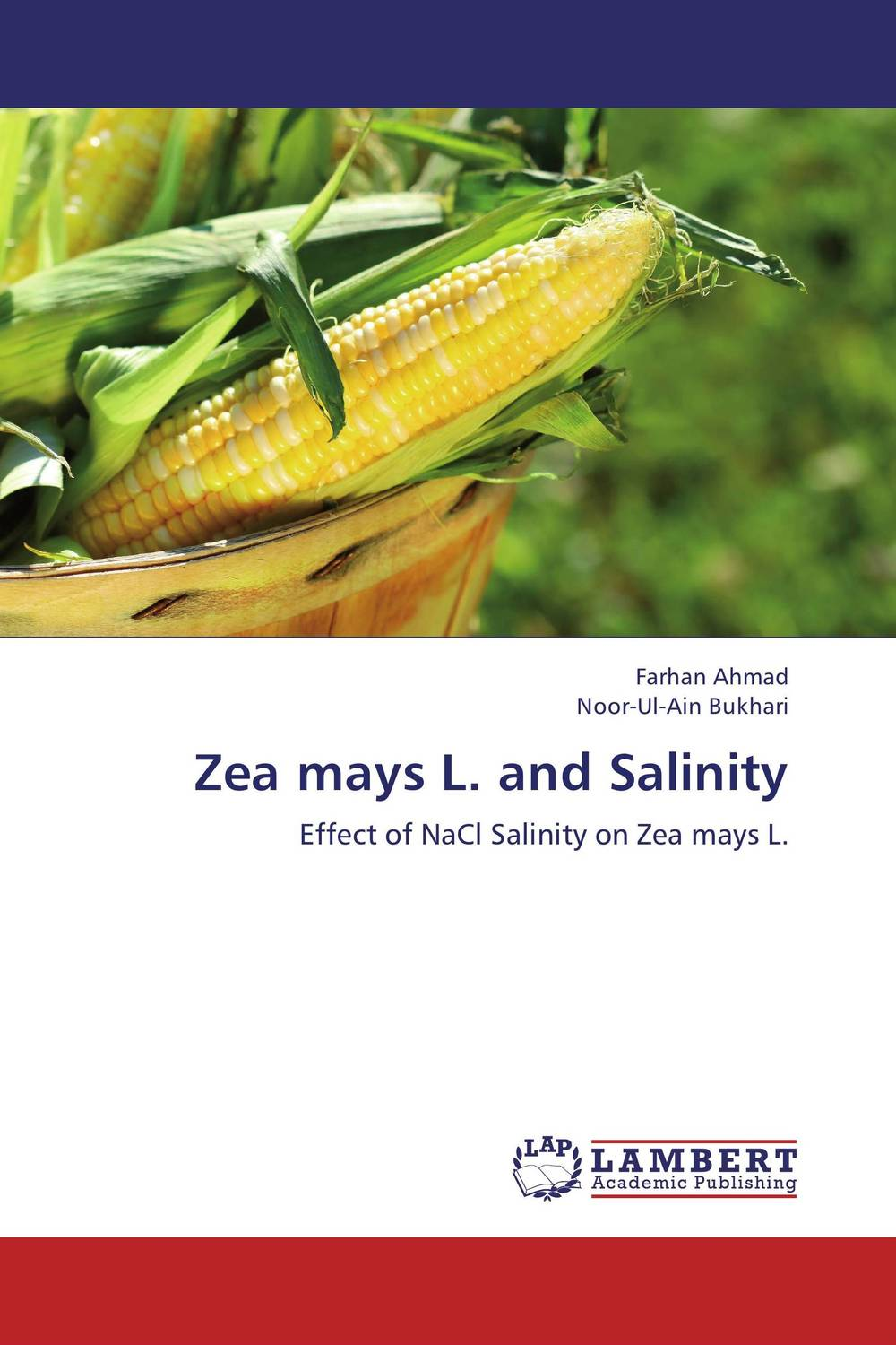 Zea mays L. and Salinity the teeth with root canal students to practice root canal preparation and filling actually