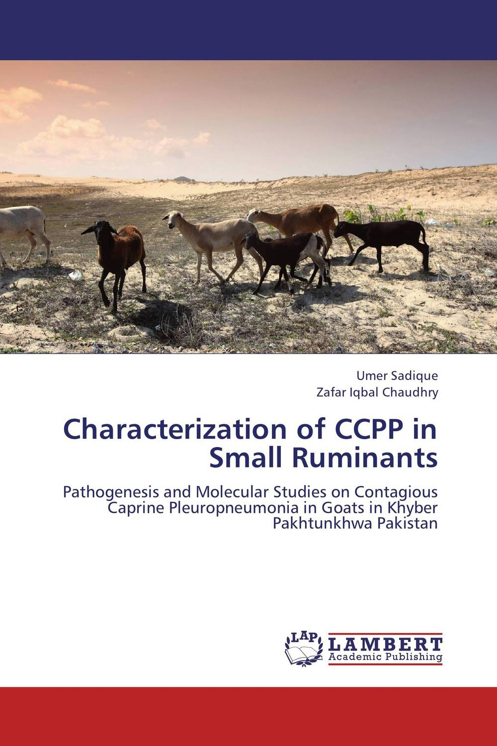 Characterization of CCPP in Small Ruminants tapan kumar dutta and parimal roychoudhury diagnosis and characterization of bacterial pathogens in animal