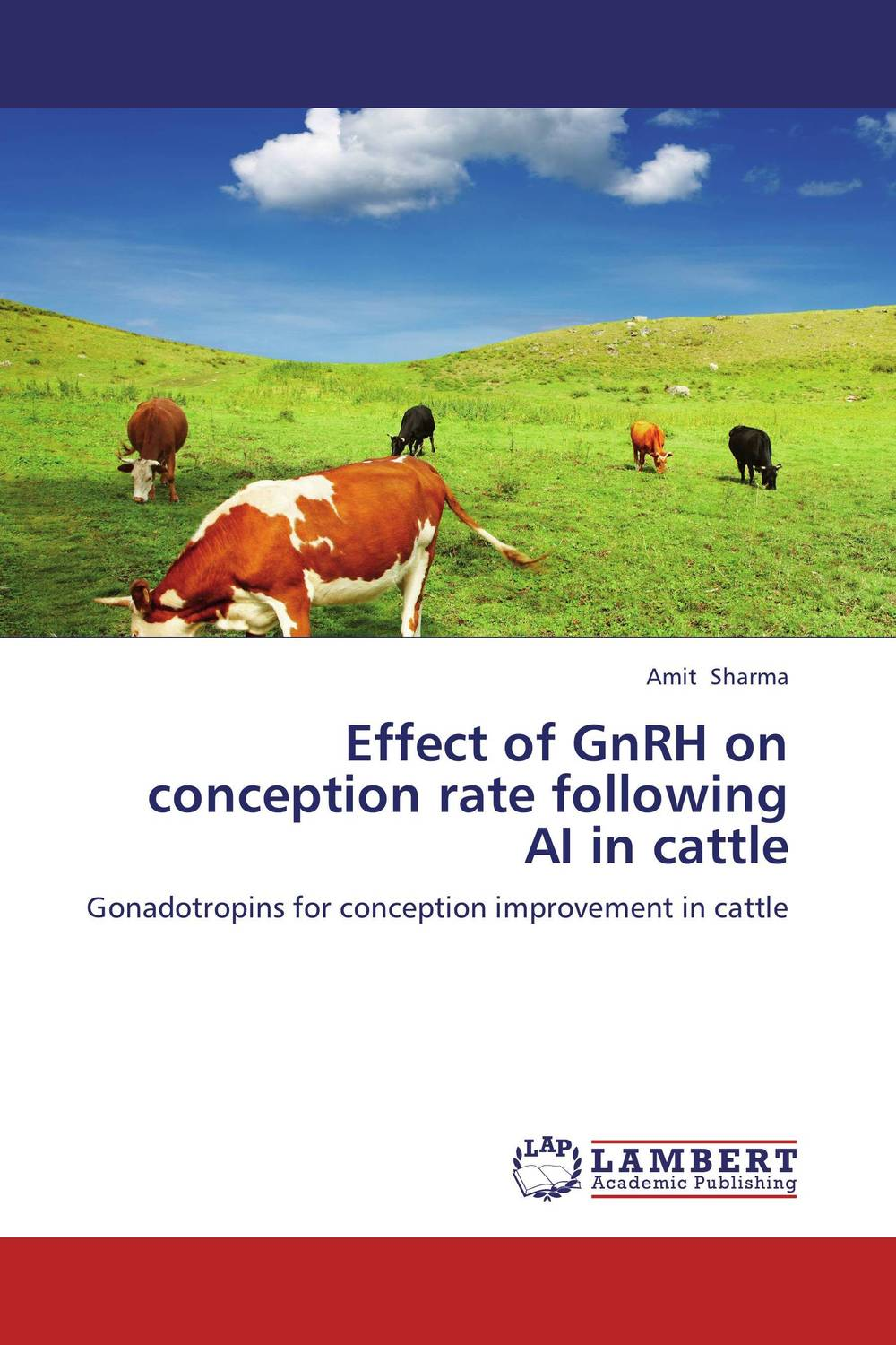 Effect of GnRH on conception rate following AI in cattle