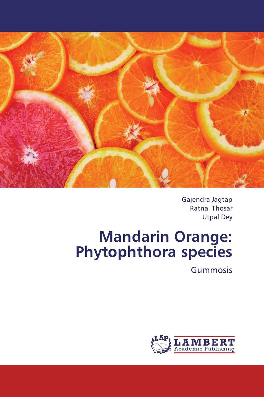 Mandarin Orange: Phytophthora species found in brooklyn