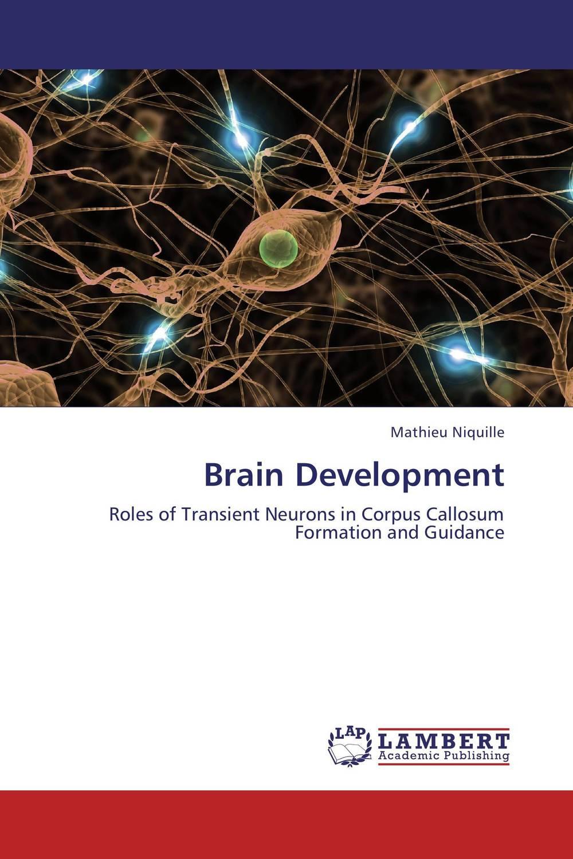Brain Development methionine supplementation alters beta amyloid levels in brain cells