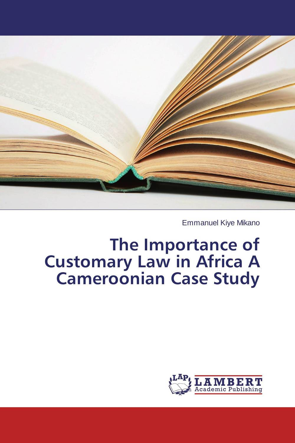 The Importance of Customary Law in Africa A Cameroonian Case Study the terror presidency – law and judgement inside the bush administration