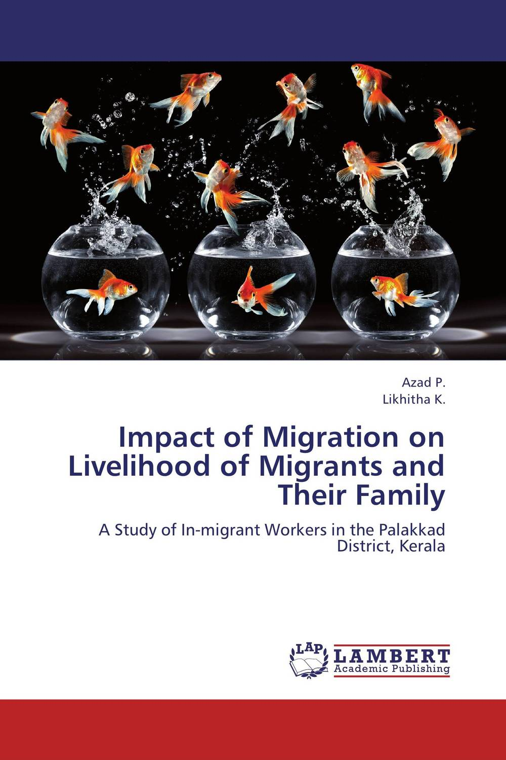 Impact of Migration on Livelihood of Migrants and Their Family linda mcdowell working lives gender migration and employment in britain 1945 2007