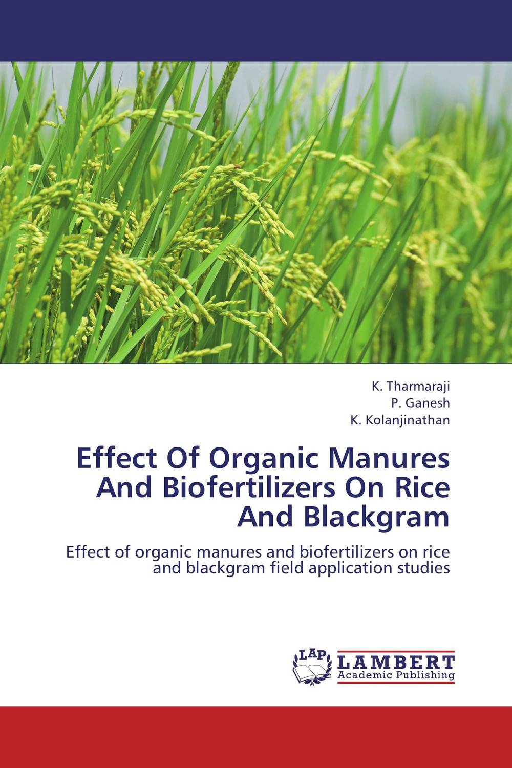 Effect Of Organic Manures And Biofertilizers On Rice And Blackgram brijesh yadav and rakesh kumar soil zinc fractions and nutritional composition of seeded rice