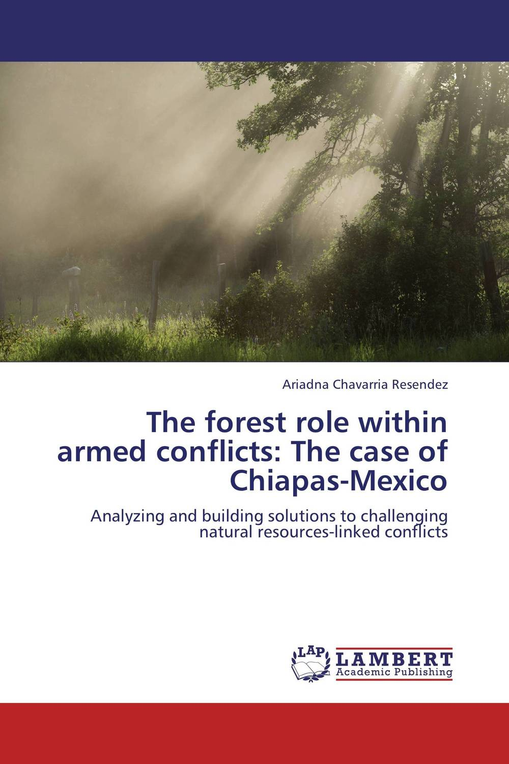 The forest role within armed conflicts:  The case of Chiapas-Mexico the role of absurdity within english humour