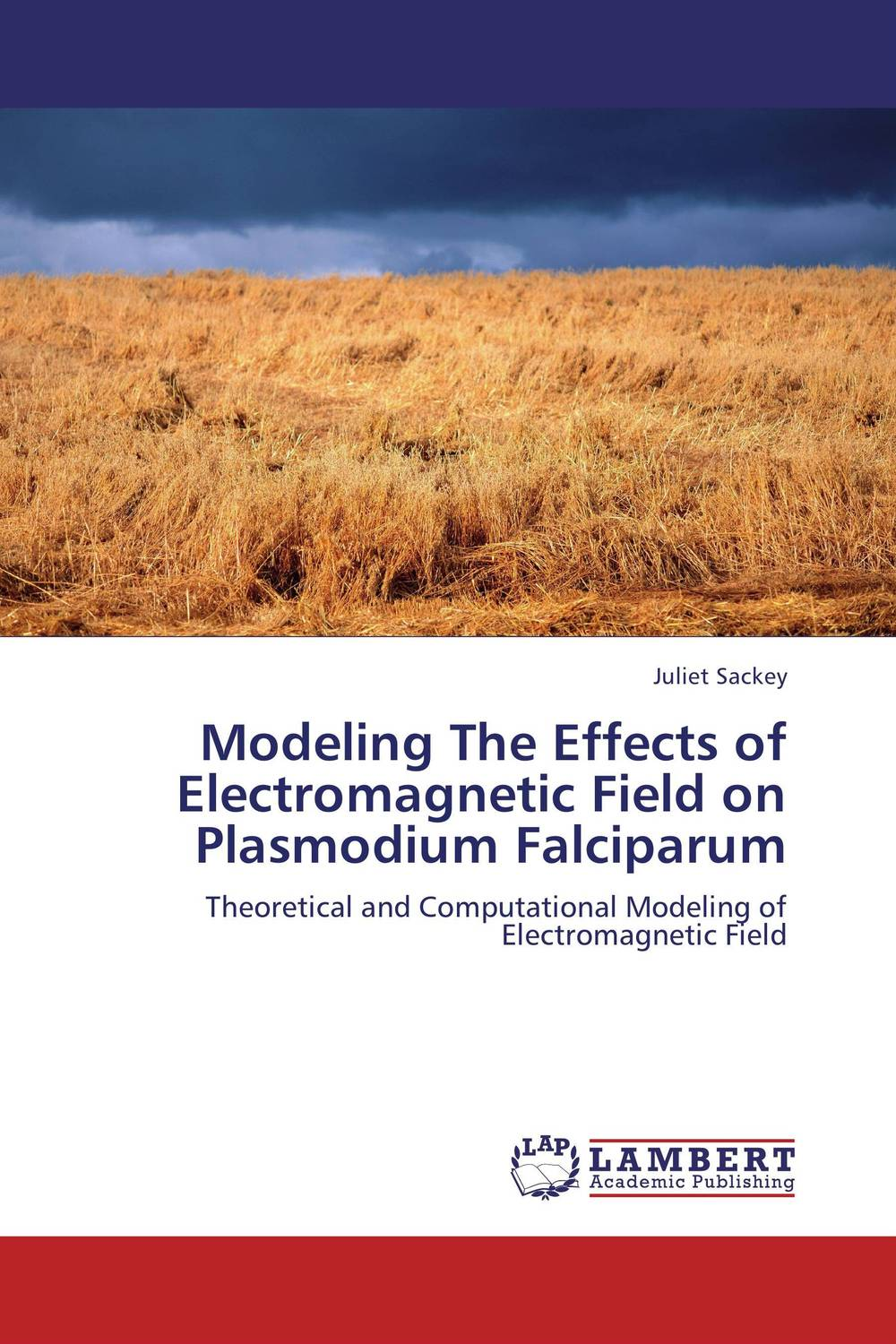 Modeling The Effects of Electromagnetic Field on Plasmodium Falciparum
