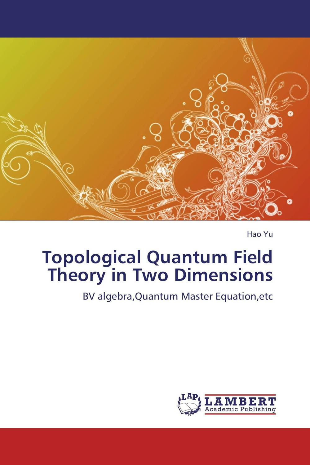 Topological Quantum Field Theory in Two Dimensions quantum field theory and the standard model