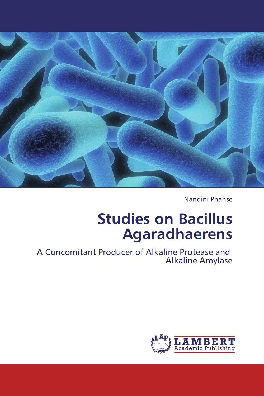 Studies on Bacillus Agaradhaerens microbial production of amylase in bacillus cereus sp