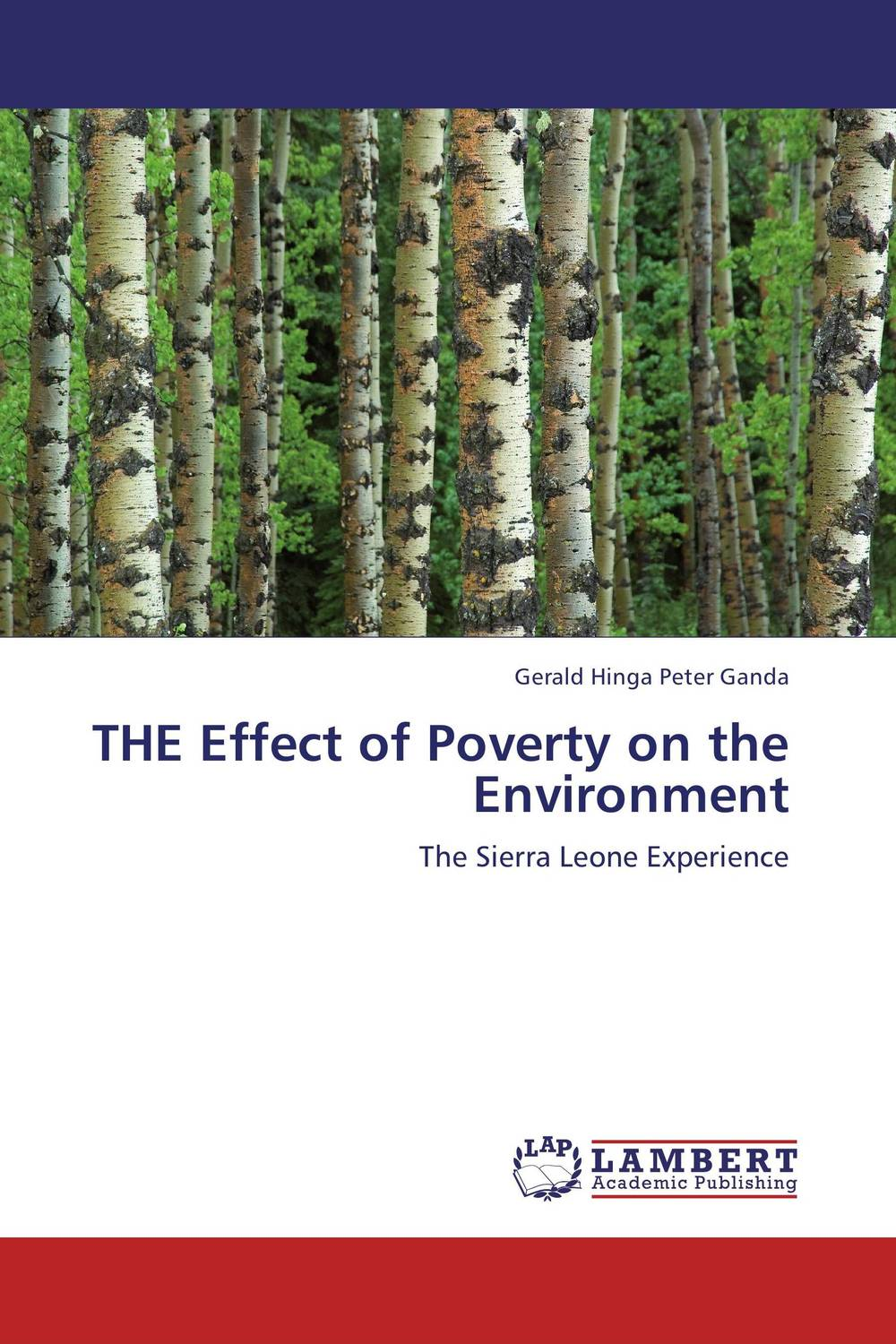 THE Effect of Poverty on the Environment world bank world development report 2004 making services work for poor people