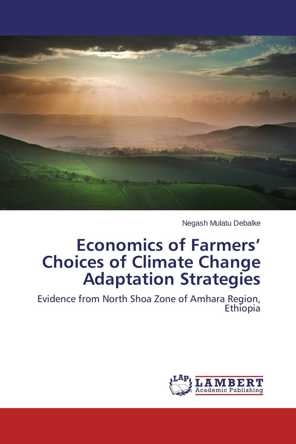 Economics of Farmers' Choices of Climate Change Adaptation Strategies climate change initiatives and strategies