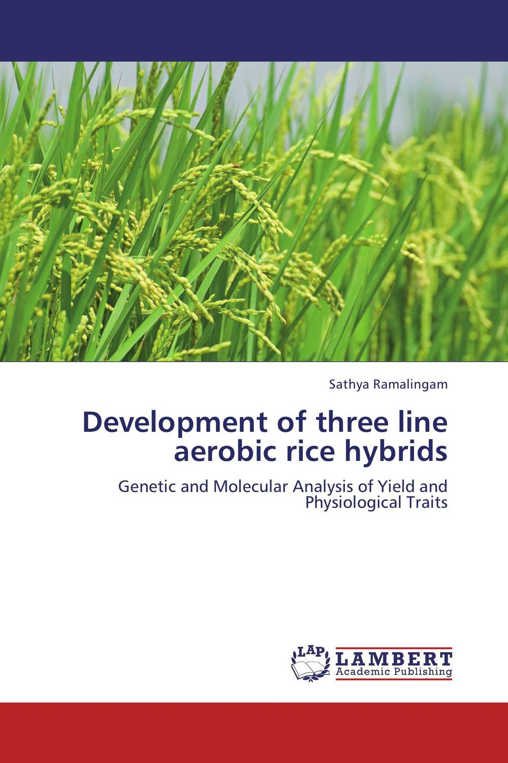 Development of three line aerobic rice hybrids cliffsnotestm on more s utopia