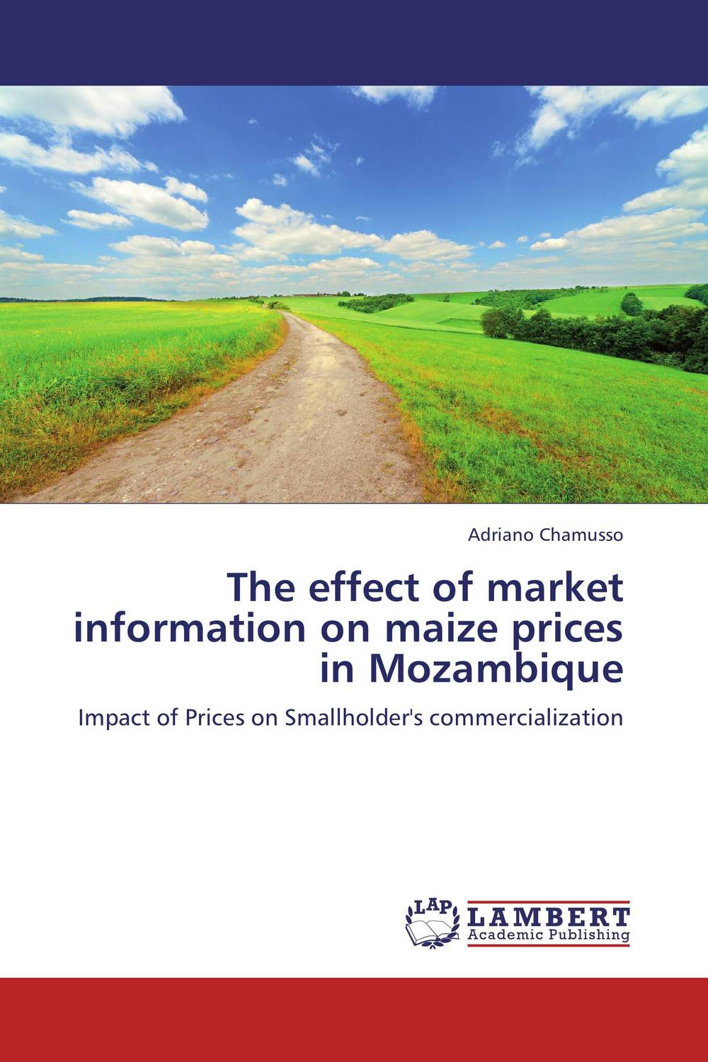 The effect of market information on maize prices  in Mozambique carlos alberto palomino lazo and aimee r kanyankogote extraction of market expectations from option prices