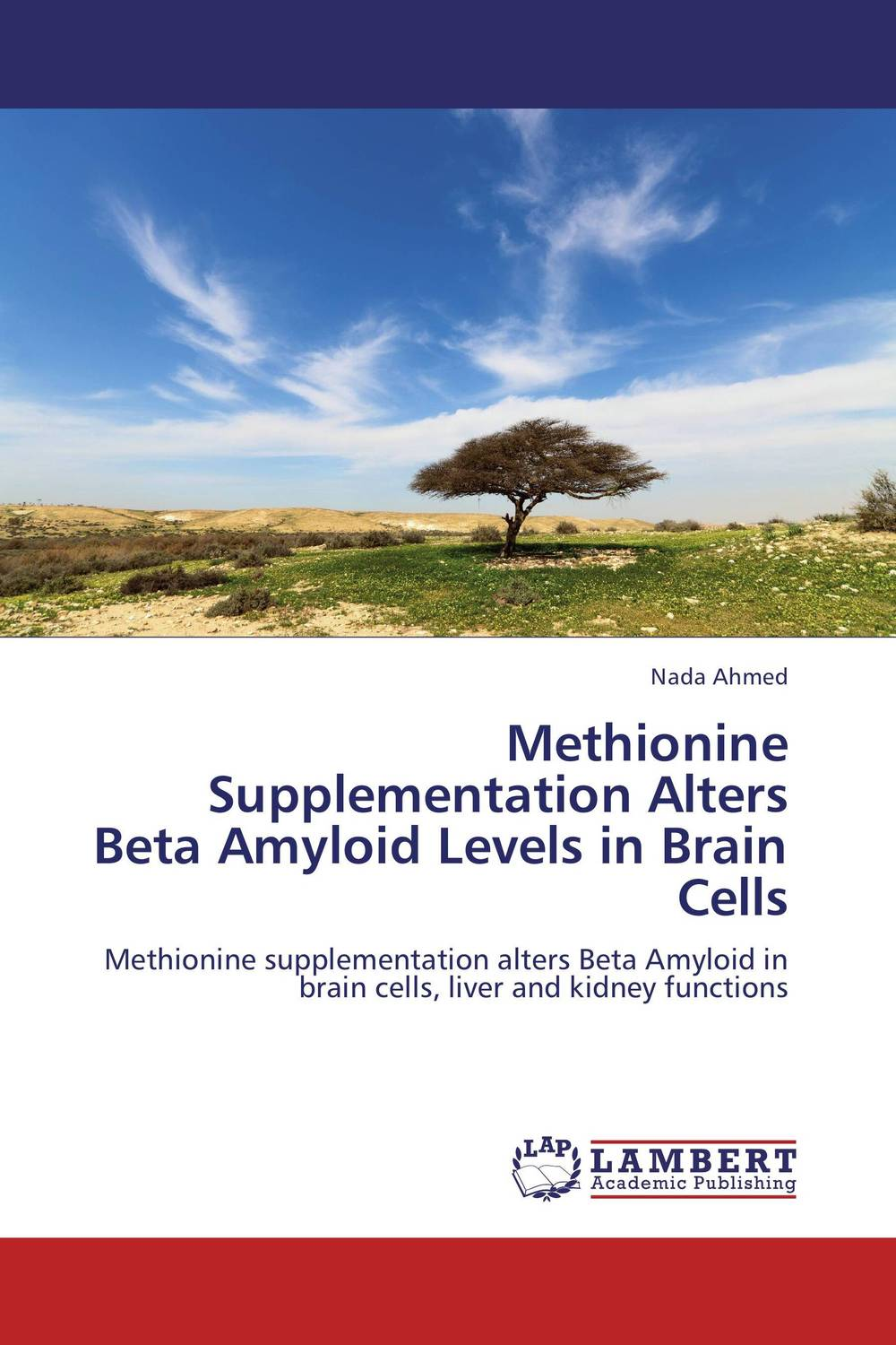 Methionine Supplementation Alters Beta Amyloid Levels in Brain Cells 1kg l methionine food grade 99% l methionine
