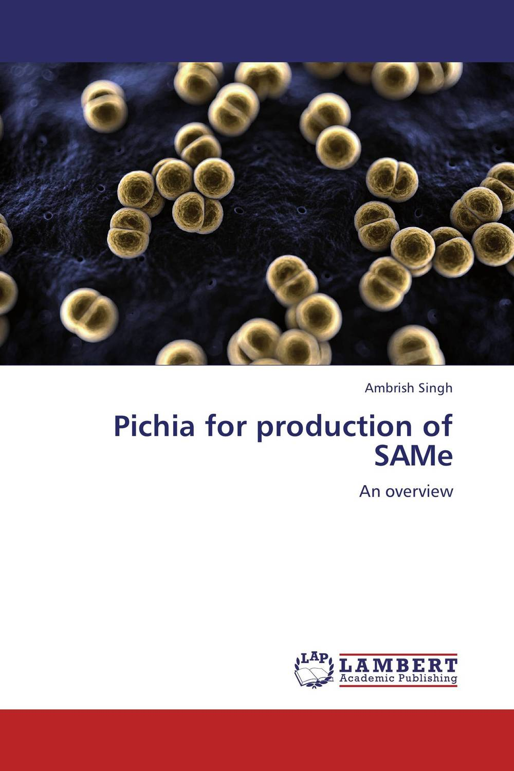 Pichia for production of SAMe alkaline protease production under solid state fermentation