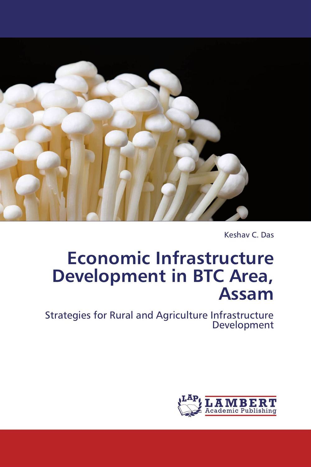 Economic Infrastructure Development in BTC Area, Assam lawrence maumbi michelo analysis of nongovernmental organisation in rural development