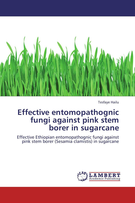 Effective entomopathognic fungi against pink stem borer  in sugarcane co inoculation effect of gluconacetobacter and am fungi on sugarcane