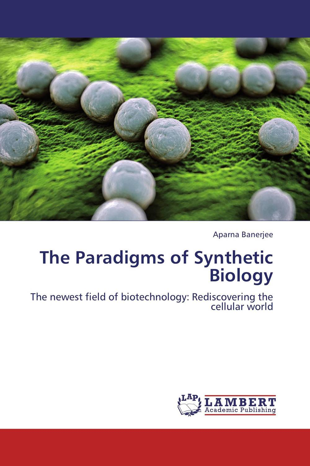 The Paradigms of Synthetic Biology the paradigms of synthetic biology