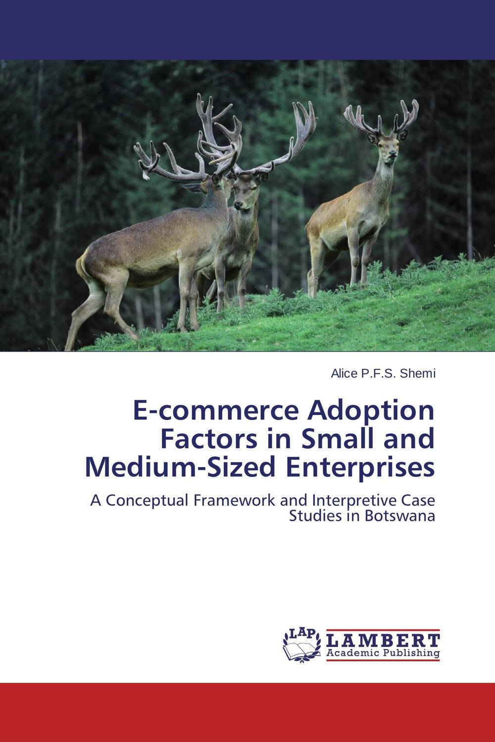 E-commerce Adoption Factors in Small and Medium-Sized Enterprises e commerce for african immigrant entrepreneurs