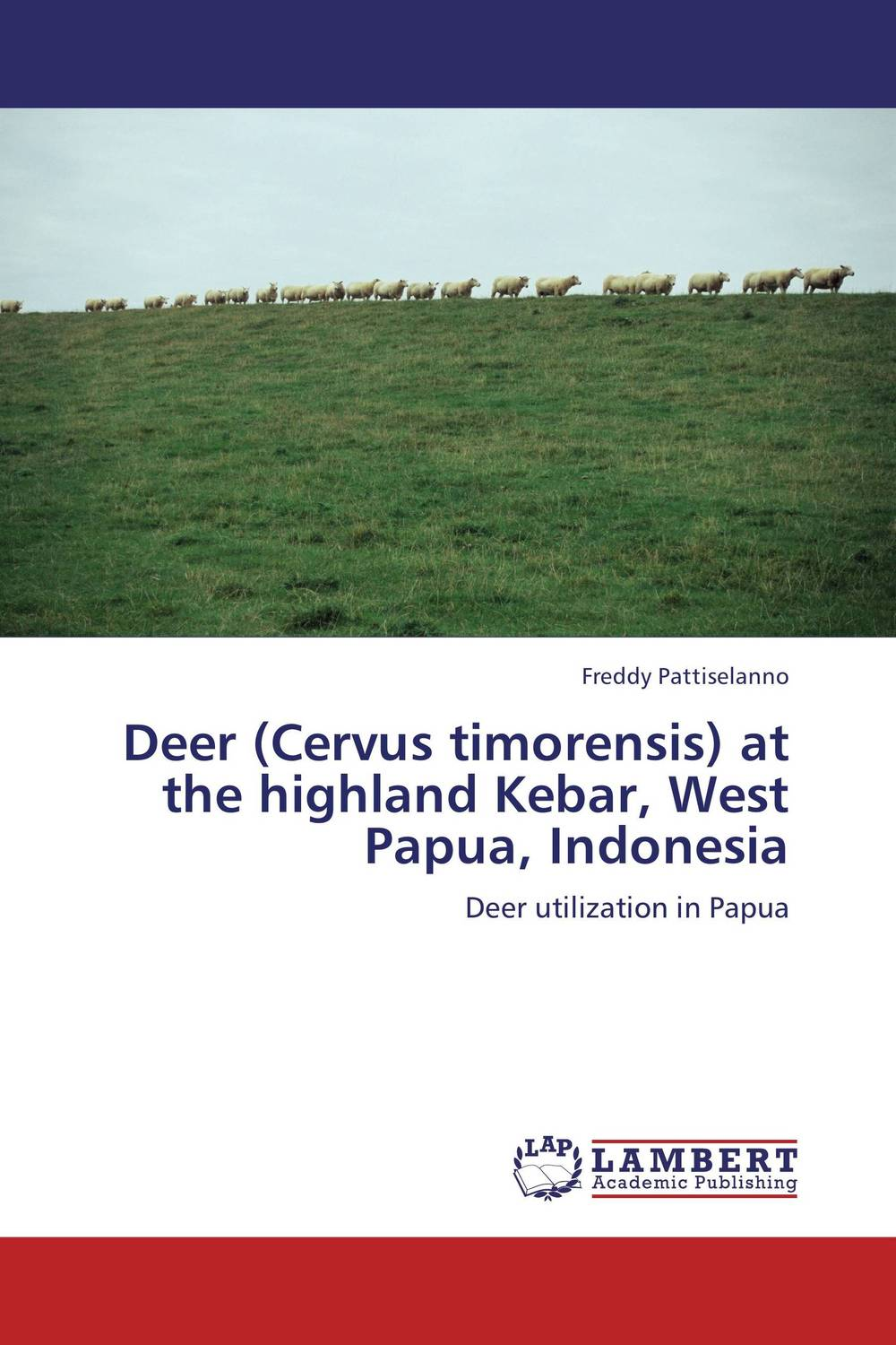 Deer (Cervus timorensis) at the highland Kebar, West Papua, Indonesia dr wax
